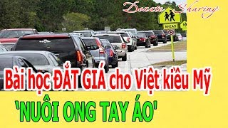 Download Bài học Đ,Ắ,T GIÁ cho Việt kiều Mỹ - 'NUÔI ONG TAY ÁO' Video