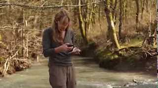 Download Ecological Engineering - Internships Give Experience Video