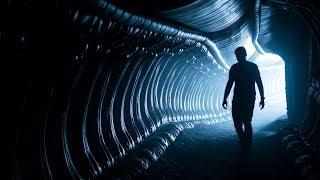Download Kermode Uncut: Alien Ancestry Video