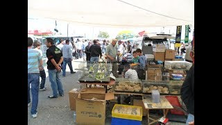 Download muhabbet kuşu pazarını gezdim Video