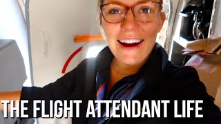 Download Week in the Life of a Flight Attendant | 5 Day Trip!!! Video