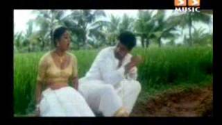 Download devipriya rare hot song with navel and cleavage Video