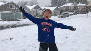 Download Live Western Washington Snow Cam Video