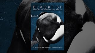 Download Blackfish Video