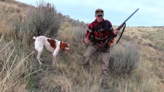 Download Thanksgiving Partridge Hunt 2016 Video