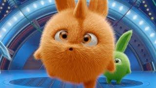Download Cartoons for Children | Sunny Bunnies - TURBO IN THE SPOTLIGHT | Funny Cartoons For Children Video