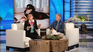 Download Salma Hayek's Dog Loves Cake! Video