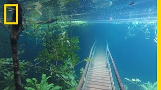 Download Heavy Rains Submerge Hiking Trails in Crystal Clear Waters | National Geographic Video