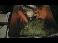 Download Pre Birthday Food Prep.. Video