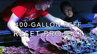 Download The 400g Reef Resetting Project Video