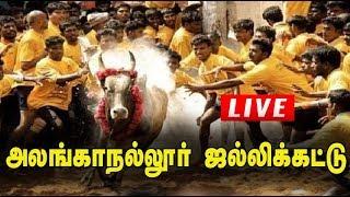 Download 🔴LIVE: அலங்காநல்லூர் ஜல்லிக்கட்டு நேரலை | Alanganallur Jallikattu 2020 Live | Jallikkattu Live Video
