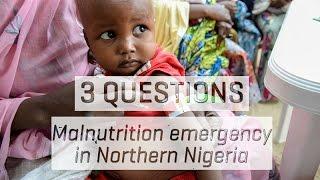 Download Malnutrition Emergency in Northeastern Nigeria Video