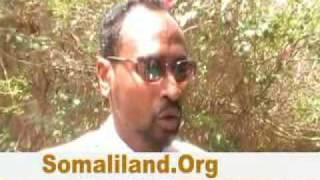 Download Xildhibaan Xasan Cawaale.flv Video