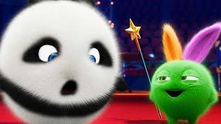 Download Cartoons for Children | Sunny Bunnies | Kung Fu Panda Bunnies | Funny Cartoons For Children Video