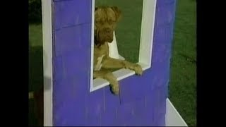 Download DVD-R Heaven: ″Tequila and Bonetti: Fetch This, Pal″ Video