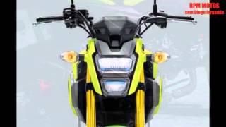 Download Honda MSX 125 Grom SF e lançada com preço de R$ 7.799,48 ( compare com a pop ) Video
