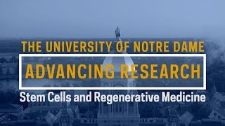 Download Advancing Research: Stem Cells and Regenerative Medicine Video