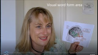 Download Teach early literacy like they do in Finland Video