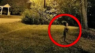 Download 12 Strangest Cryptid Photos Video