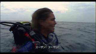 Download オープン・ウォーター - 予告編 (字幕版) Video