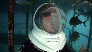 Download Great Barrier Reef (HD) | JONATHAN BIRD'S BLUE WORLD Video