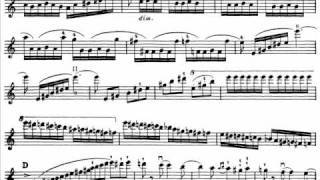 Download Saint-Saëns, Camille Introduction + Rondo Capriccioso op. 28 violin & orchestra Video