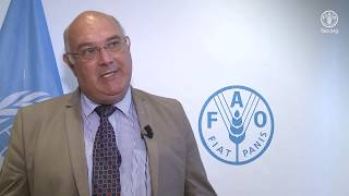 Download Remarks by Theo De Jager, President of the World Farmer's Organization Video