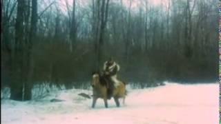Download Ilsa the Tigress of Siberia (1977) Video