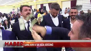 Download Şanlıurfa'da ağa düğünü Video
