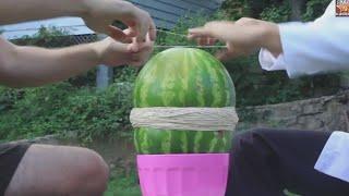Download Rubber Watermelon Trick Video
