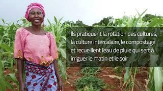 Download Améliorer la résilience des agriculteurs familiaux aux changement climatique Video