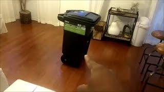 Download $60 For a Trash Can?!! Video