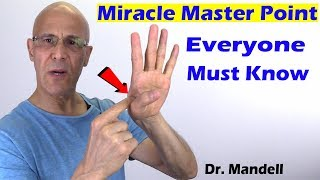 Download #1 Body's Miracle Master Point Everyone Must Know - Dr Alan Mandell, DC Video