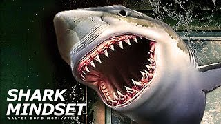 Download SHARK MINDSET | One of the Best Speeches Ever by Walter Bond Video