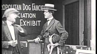 Download A LUCKY DOG 1921 STAN LAUREL & OLIVER HARDY Video