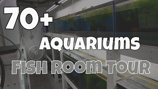 Download Fish Room Tour - Angelfish and Pleco Breeder Video