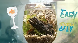 Download HOW TO: WineGlass Aquarium! Video