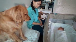 Download 우리 아기. 우리 강아지들. 우리 가족. Video