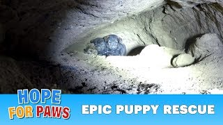 Download Epic puppy rescue - 18 feet into the earth!!! Dangerous Hope For Paws rescue! Video