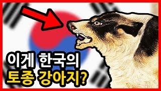 Download 오직 한국에만 겁나 많은 동물들 빨간토마토 Video