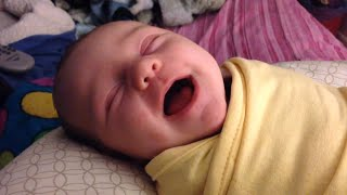 Download Best Babies Laughing While Sleeping Compilation Video