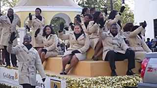 Download Alabama St. Univ. Vs Stillman College: 2014 TDC Parade P1 Video
