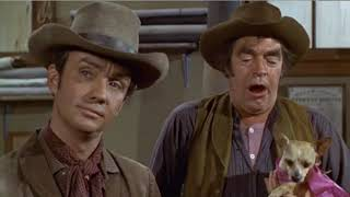Download Yellow Dog Scene From Support Your Local Gunfighter with James Garner & Jack Elam Video