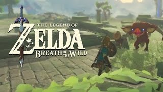 Download Official Combat Gameplay - The Legend of Zelda: Breath of the Wild Video