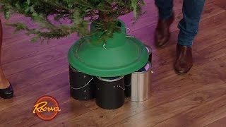Download You Bought a Tree That's Too Short, Now What? Video