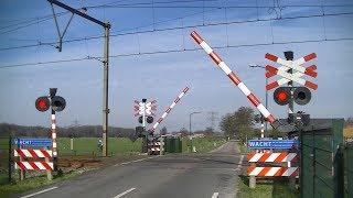 Download Spoorwegovergang Woudenberg // Dutch railroad crossing Video