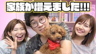Download 【報告】新しい家族が増えました!【犬】 Video