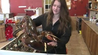 Download Woman Buys 23 Pound Lobster to Set Him Free Video