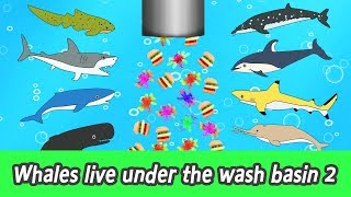 Download [EN] Whales live under the wash basin 2, kids animals animation, whales adventureㅣCoCosToy Video