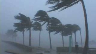 Download Hurricane Wilma Video - Miami Beach, Florida Video